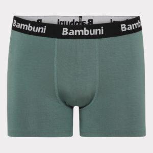 Bambus underbukser grøn og blå bambuni